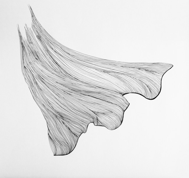<span class=&#34;artist&#34;><strong>Lucy Ribeiro</strong></span>, <span class=&#34;title&#34;><em>Ginko II</em>, 2013</span>