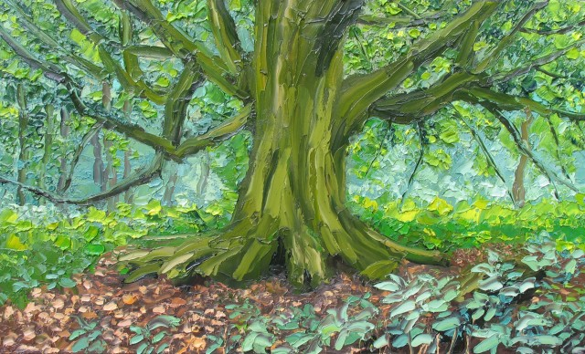 <span class=&#34;artist&#34;><strong>Colin Halliday</strong></span>, <span class=&#34;title&#34;><em>Old Beech Tree</em>, 2014-15</span>