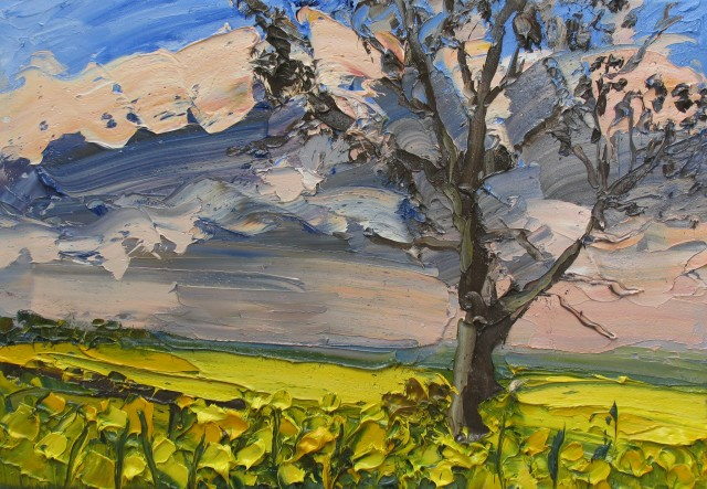 <span class=&#34;artist&#34;><strong>Colin Halliday</strong></span>, <span class=&#34;title&#34;><em>Rapeseed</em>, 2014-15</span>
