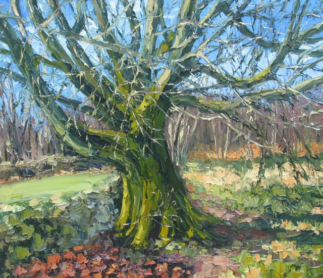 <span class=&#34;artist&#34;><strong>Colin Halliday</strong></span>, <span class=&#34;title&#34;><em>Ancient Oak</em>, 2014-15</span>