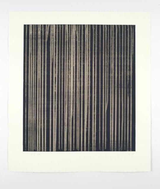 Callum Innes, R I, 2008