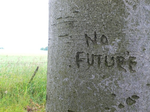 Andrew Miller, No Future, 2012