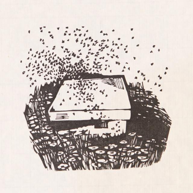 Xu Bing 徐冰, Fragrant Grasses 芳草地, 1980