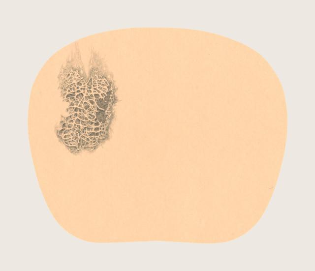 Bingyi 冰逸, Fairy of Heart with Many Holes 窍妖, 2012-2016