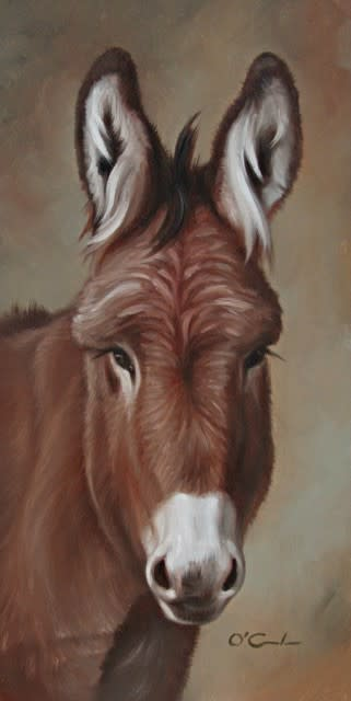<span class=&#34;artist&#34;><strong>Jennifer O'Cualain</strong></span>, <span class=&#34;title&#34;><em>JORGE</em></span>