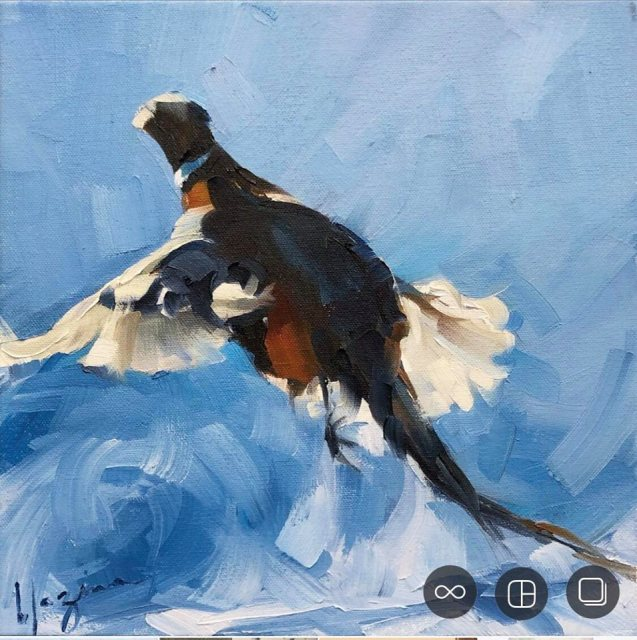 <span class=&#34;artist&#34;><strong>Amber Blazina</strong></span>, <span class=&#34;title&#34;><em>ROOSTER</em></span>