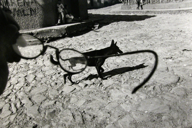 Larry Towell, Perquín, Morazán, El Salvador [dog/glasses], 1991