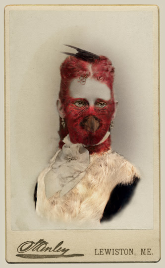 Sara Angelucci  Aviary (Red-headed Woodpecker/endangered), 2013  Chromogenic print flush mounted to archival board  22 ½ x 34 inch (57.15 x 86.36 cm)  Edition of 15 (#7/15)