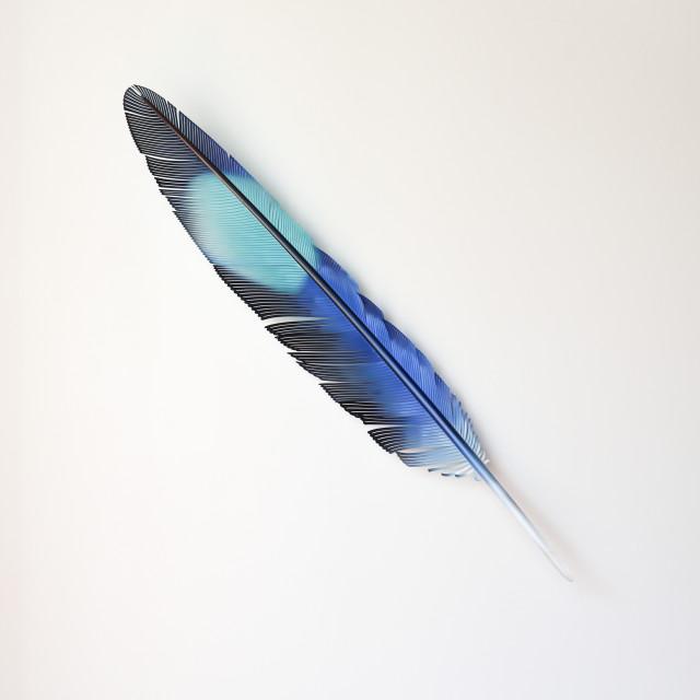 Neil Dawson, Kōtare Wing Feather, 2020