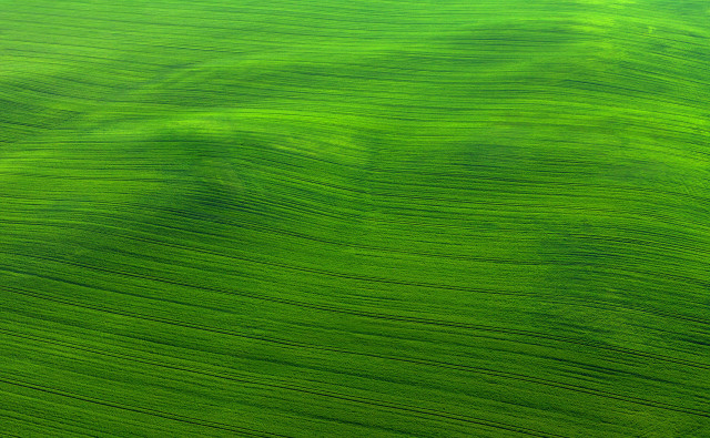 Green Just Lies There Awhile Breathing, Long Slow Breaths