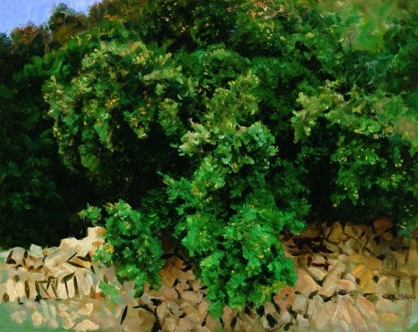 John Singer Sargent (1856-1925), Ilex Wood, Majorca, 1908, oil on canvas, 57 x 71 cm, Museo Thyssen-Bornemisza Madrid