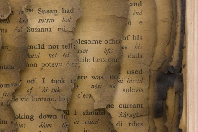 Detail- Bernard Aubertin, 1974, Livre brulé, 73x80cm, burnt book
