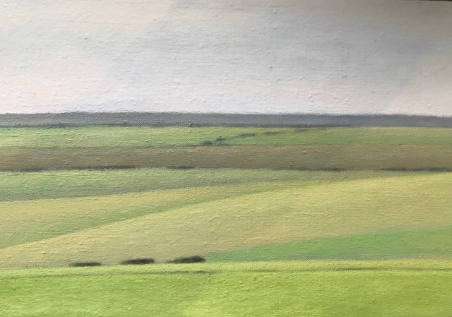 David Stubbs, Sussex Downs Near Beachy Head, Study