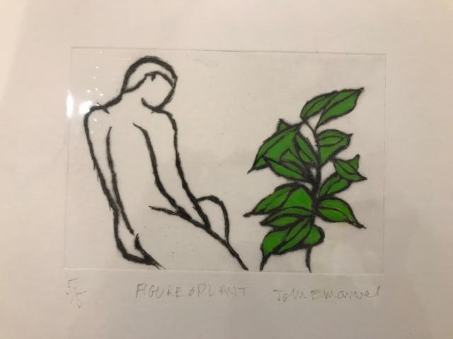 Figure & Plant