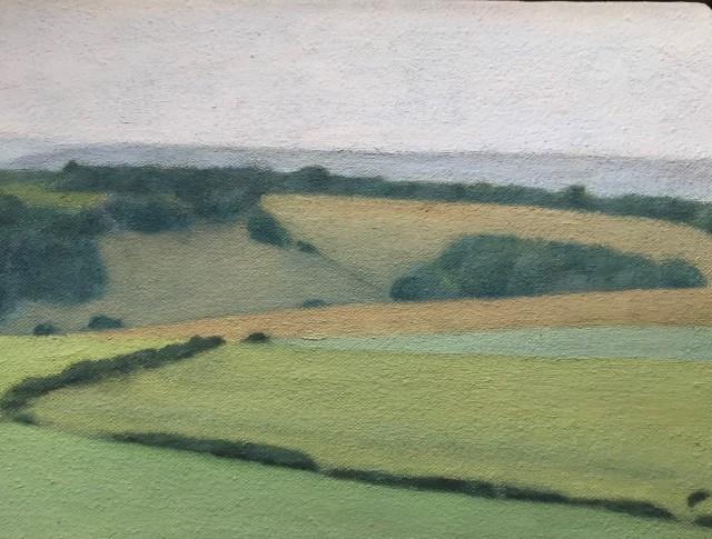 David Stubbs, Sussex Downs Near East Dean, Study
