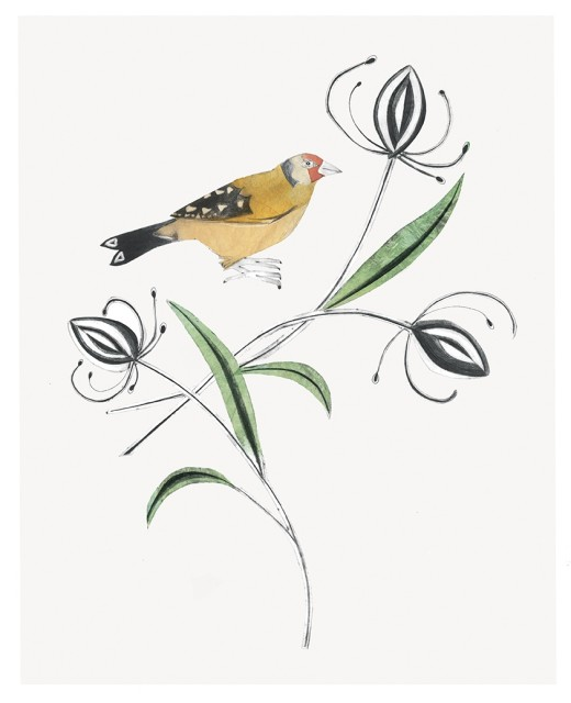 Beatrice Forshall, Goldfinch Hand-painted drypoint etching