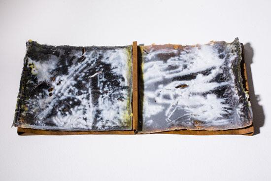 Susan Harlan, Dark Ecology I, 2014