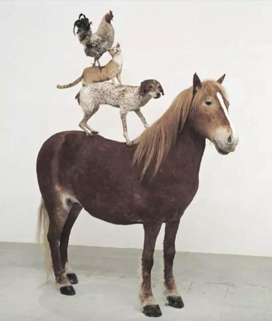 Katarzyna Kozyra 卡塔姿娜·科兹拉, Pyramid of Animals《动物金字塔》, 1993, life size sculpture of four taxidermy animals | 四件与实物等大的动物标本雕塑,220 x 190 x 120 cm