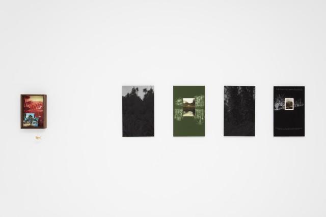 """Chen Dandizi 陈丹笛子, """"The South"""" """"南方"""", 2016"""
