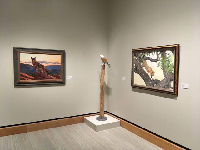 Art And The Animal , James Museum Florida - United States