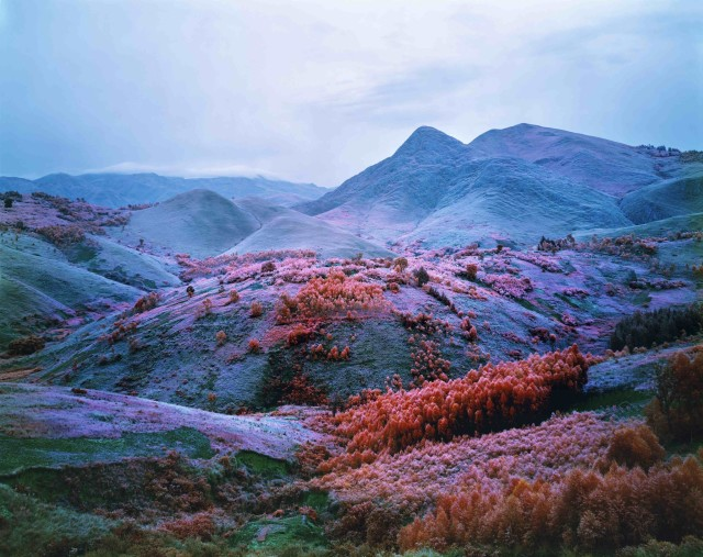 Richard Mosse, At Home he's a Tourist, 2012, C-print, 72 x 90 in. Edition of 2 + 1AP