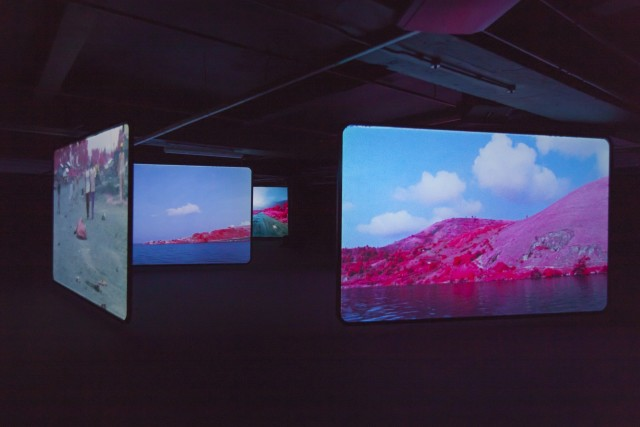 Richard Mosse, The Enclave, Installation view