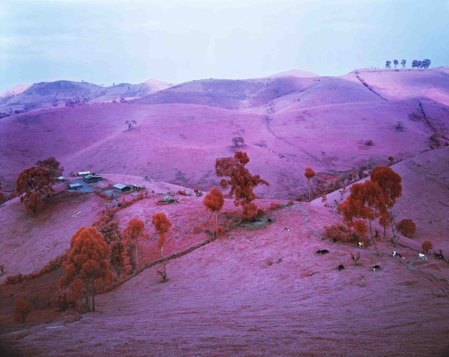 Richard Mosse, Endless Plain of Fortune, 2012