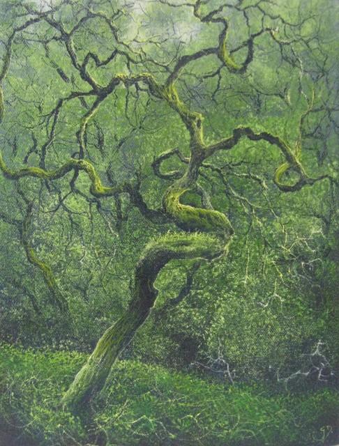 Gerald Dewsbury, Twisted Oak, Maentwrog
