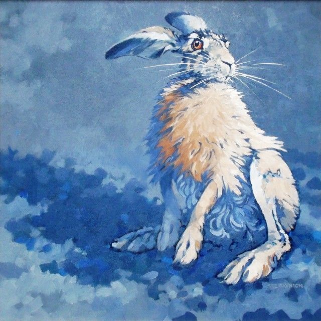 Sitting Hare I