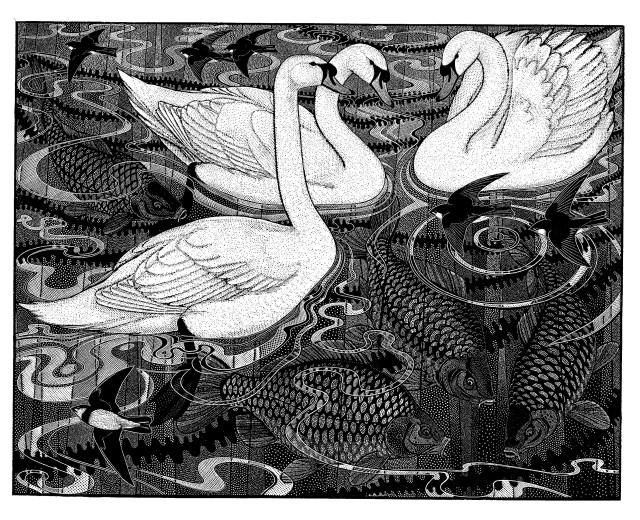 Mute Swan and Carp II