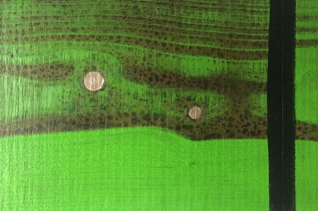 Robert Pitwell, Rain on Larches