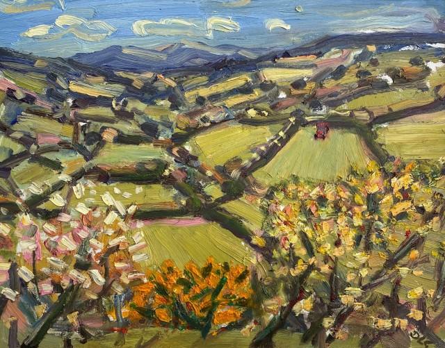 David Lloyd Griffith, Dyffryn Dulas - Spring Time