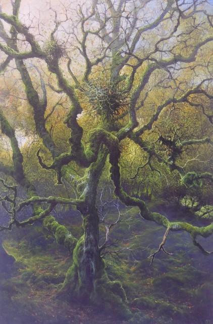 Gerald Dewsbury, Big Old Birch, Coed y Rhygen