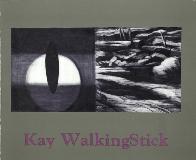 """Cover image for the exhibition catalogue, """"Kay WalkingStick - Painting: 1974-1990"""" (1991)"""