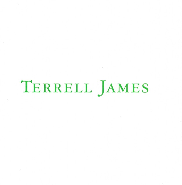 Cover of softcover exhibition catalogue, Terrell James: Place for Two Stones (2007)