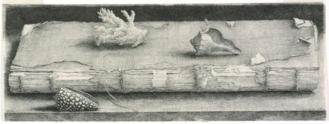 Érik Desmazières, Registre et coquillages, 2002