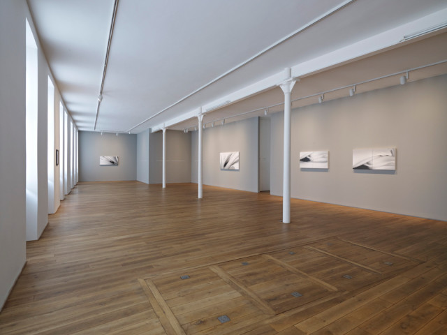Installation view, Gallery I