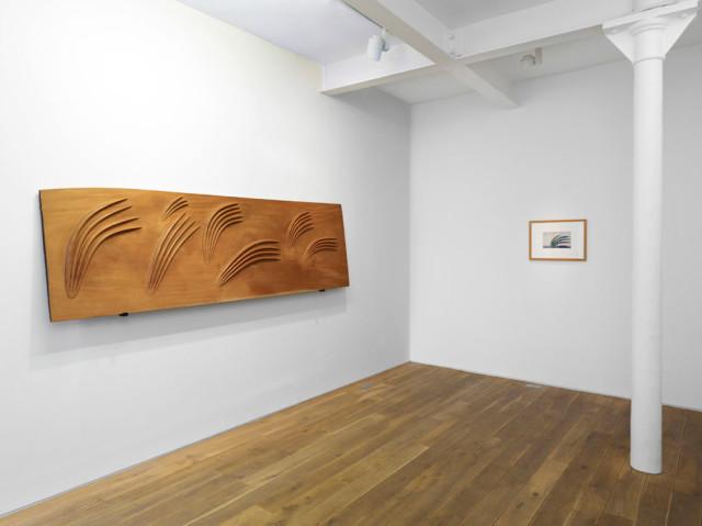 Installation view Craig Murray-Orr, Gallery II 2010
