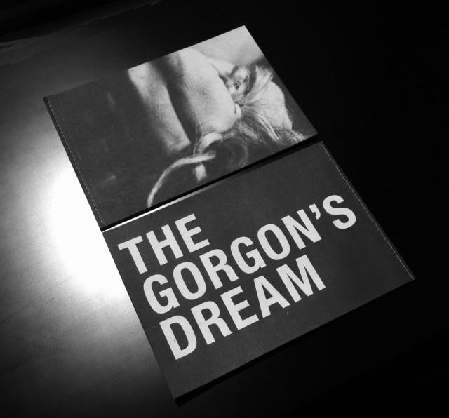 David Austen: The Gorgon's Dream
