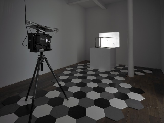 Charles Avery Untitled (Dihedra), 2010-2012 16mm projection, steel cage, 196 steel tiles, plinth, projector, looper, tripod Dimensions vary