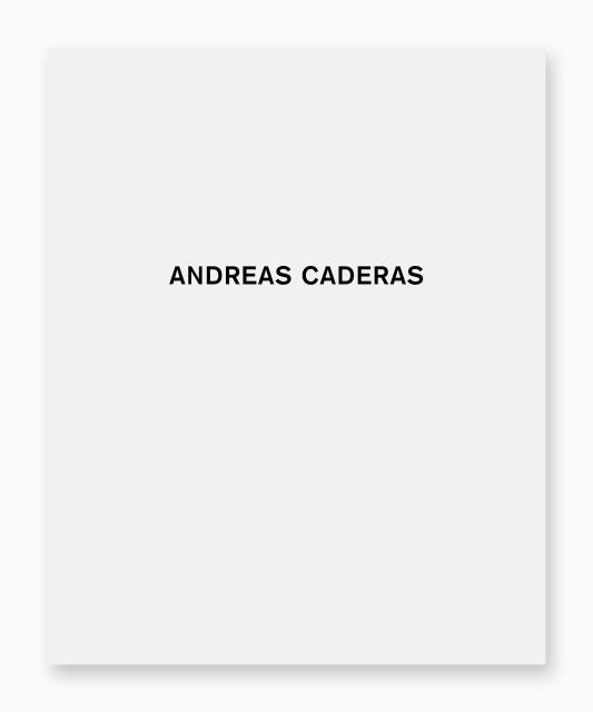 Andreas Caderas Malerei und Objekte, Galerie Friedrich Müller, 2008