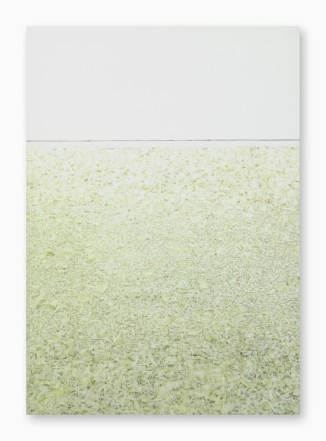Katsuhito Nishikawa, Arbeiten 1990-1997