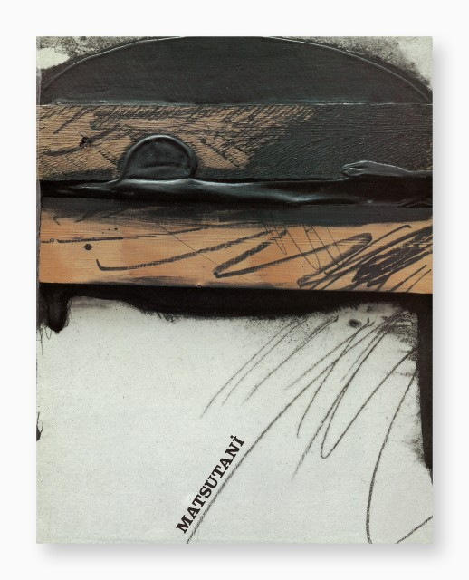 Takesada Matsutani, Peintures/Installations