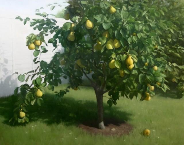 Raquel Alvarez Sardinia MA SWA  The Quince Tree  £8,500