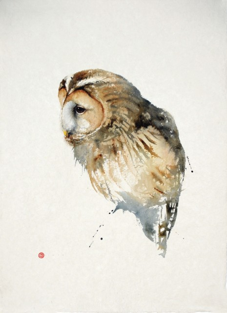 Tawny Owl, watercolour on paper, 29 x 22 ins
