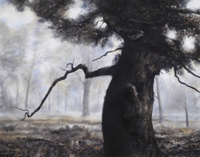 Blenheim Oak ink, watercolour & charcoal on paper, 45 x 56 ins