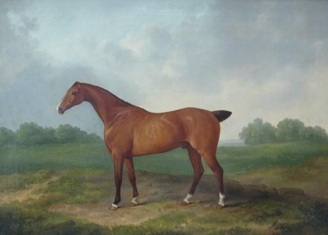 James Barenger, Race Horse (I of II)