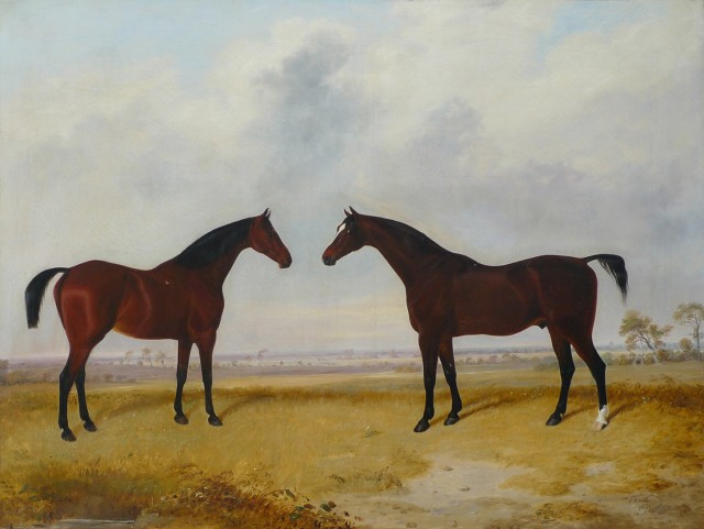 E. W. Webb, Two Horses
