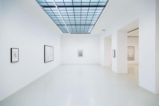 Installation View: Maximilian Prüfer, TIER, Galerie Kandlhofer, 2019