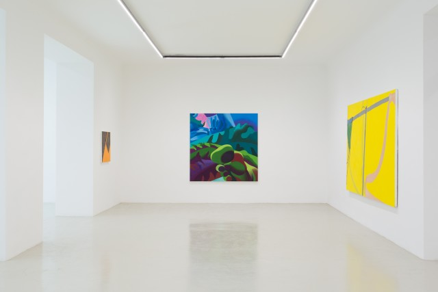 Installation view: The Picture is a forest, Galerie Kandlhofer, 2019